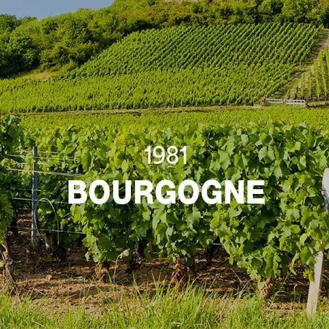 1981 - BOURGOGNE