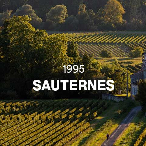 1995 - SAUTERNES