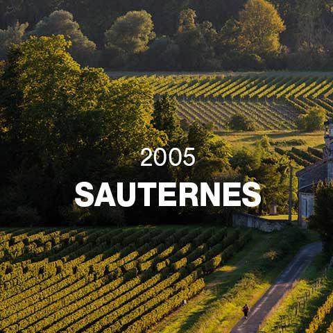 2005 - SAUTERNES